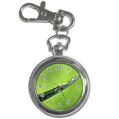 Green Drops Key Chain & Watch