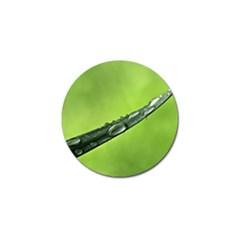 Green Drops Golf Ball Marker 4 Pack