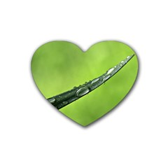 Green Drops Drink Coasters 4 Pack (Heart)