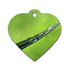 Green Drops Dog Tag Heart (Two Sided)
