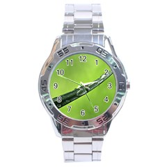 Green Drops Stainless Steel Watch
