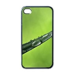 Green Drops Apple iPhone 4 Case (Black)