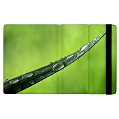 Green Drops Apple iPad 2 Flip Case