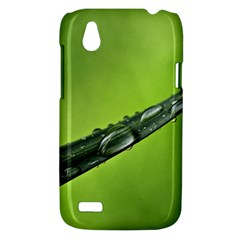 Green Drops HTC T328W (Desire V) Case