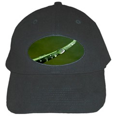 Grass Drops Black Baseball Cap