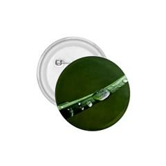 Grass Drops 1 75  Button