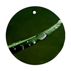 Grass Drops Round Ornament