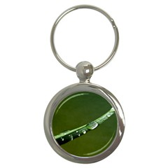 Grass Drops Key Chain (Round)