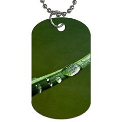 Grass Drops Dog Tag (One Sided)