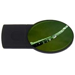 Grass Drops 2GB USB Flash Drive (Oval)