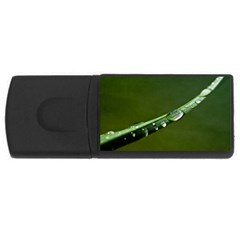 Grass Drops 1GB USB Flash Drive (Rectangle)