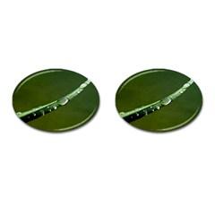 Grass Drops Cufflinks (Oval)