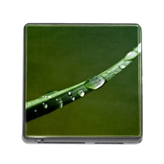 Grass Drops Memory Card Reader with Storage (Square)