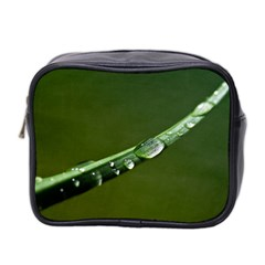 Grass Drops Mini Travel Toiletry Bag (Two Sides)