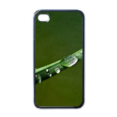 Grass Drops Apple Iphone 4 Case (black)