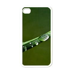 Grass Drops Apple Iphone 4 Case (white)