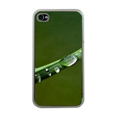 Grass Drops Apple Iphone 4 Case (clear)