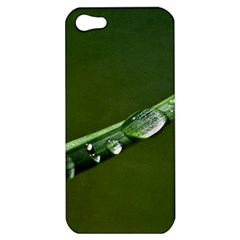 Grass Drops Apple iPhone 5 Hardshell Case
