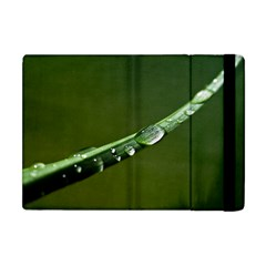 Grass Drops Apple iPad Mini Flip Case