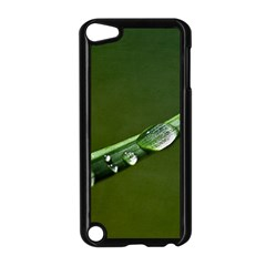 Grass Drops Apple iPod Touch 5 Case (Black)
