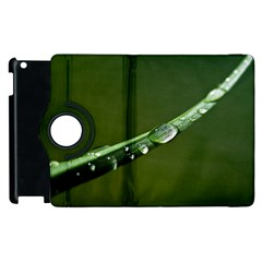Grass Drops Apple iPad 3/4 Flip 360 Case