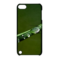 Grass Drops Apple Ipod Touch 5 Hardshell Case With Stand
