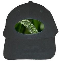 Grass Drops Black Baseball Cap