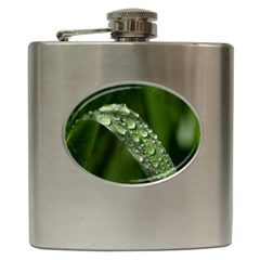 Grass Drops Hip Flask
