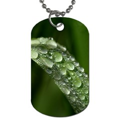 Grass Drops Dog Tag (two Sided)