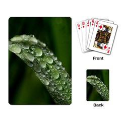 Grass Drops Playing Cards Single Design