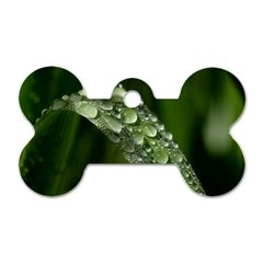 Grass Drops Dog Tag Bone (one Sided)