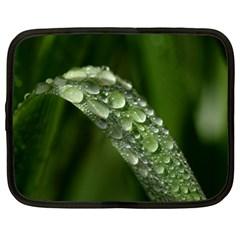 Grass Drops Netbook Sleeve (XL)