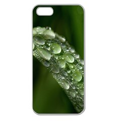 Grass Drops Apple Seamless Iphone 5 Case (clear)