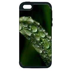Grass Drops Apple Iphone 5 Hardshell Case (pc+silicone)