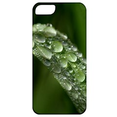 Grass Drops Apple Iphone 5 Classic Hardshell Case