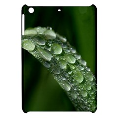 Grass Drops Apple Ipad Mini Hardshell Case