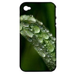 Grass Drops Apple iPhone 4/4S Hardshell Case (PC+Silicone)
