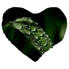 Grass Drops 19  Premium Heart Shape Cushion