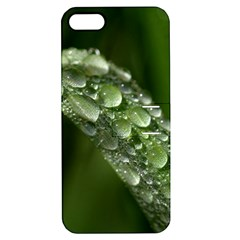 Grass Drops Apple iPhone 5 Hardshell Case with Stand