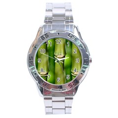 Bamboo Stainless Steel Watch
