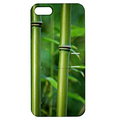 Bamboo Apple iPhone 5 Hardshell Case with Stand