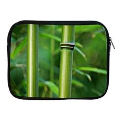 Bamboo Apple iPad Zippered Sleeve