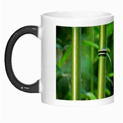 Bamboo Morph Mug