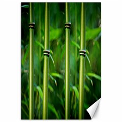 Bamboo Canvas 12  x 18  (Unframed)