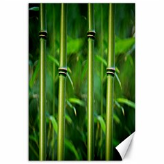 Bamboo Canvas 20  X 30  (unframed)