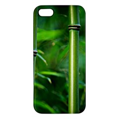 Bamboo iPhone 5 Premium Hardshell Case