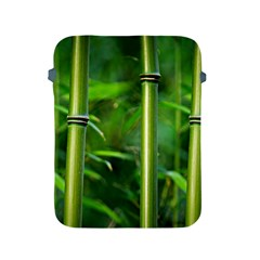 Bamboo Apple Ipad Protective Sleeve