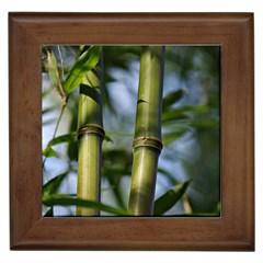 Bamboo Framed Ceramic Tile