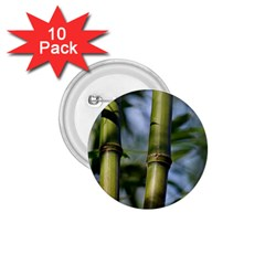 Bamboo 1.75  Button (10 pack)