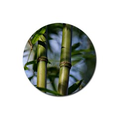 Bamboo Drink Coasters 4 Pack (round)
